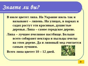 Знаете ли вы? В июле цветет липа. На Украине июль так и называют – липень. На