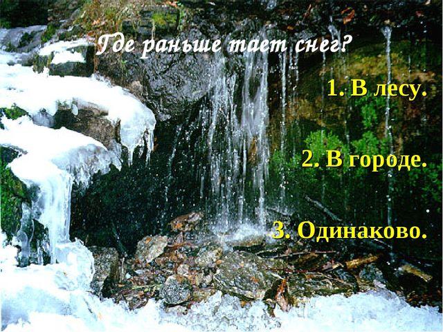 Где раньше тает снег? 1. В лесу. 2. В городе. 3. Одинаково.
