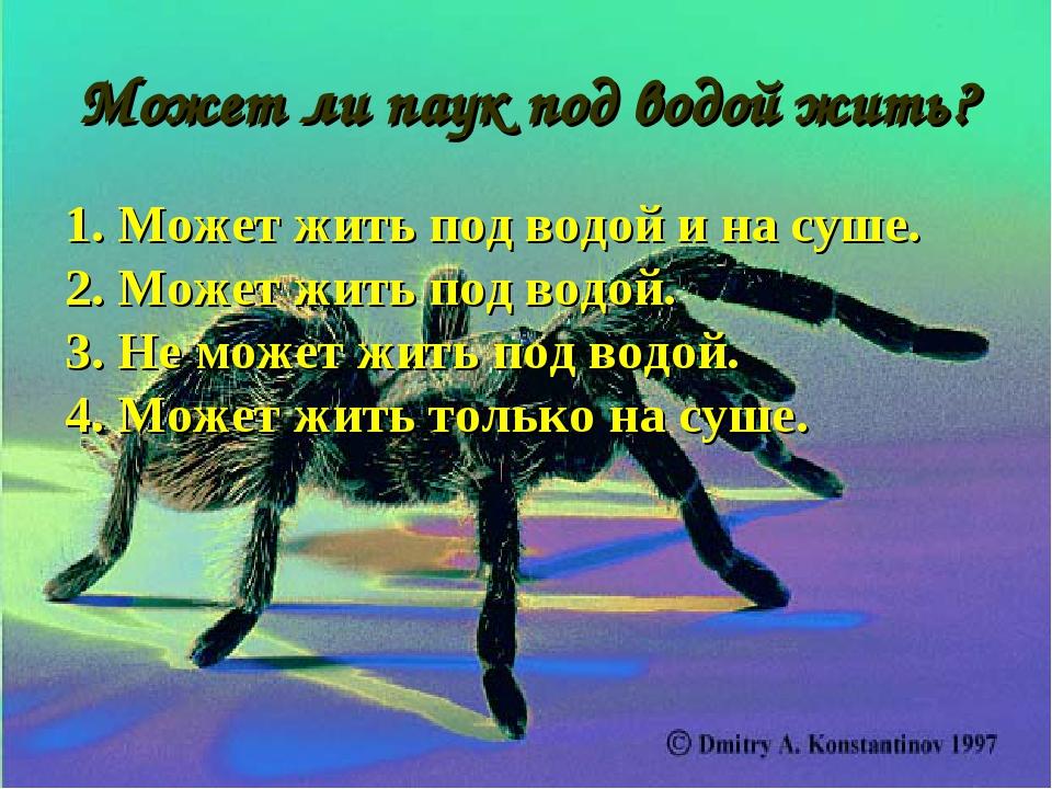 Может ли паук под водой жить? 1. Может жить под водой и на суше. 2. Может жит...