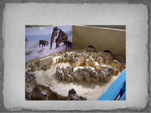 Юдиново. Музей Палеолит. Погарский район
