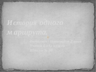 Выполнил: Виноградов Данил Ученик 6 «А» класса Школы № 28 История одного марш