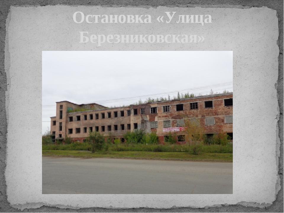 Остановка «Улица Березниковская»