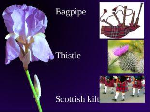 Bagpipe Thistle Scottish kilt