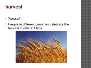 harvest Урожай People in different countries celebrate the harvest in differe