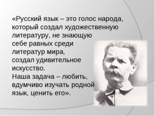 «Русский язык – это голос народа, который создал художественную литературу, н