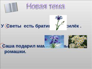 У Светы есть братишка Василёк . Саша подарил маме васильки и ромашки.