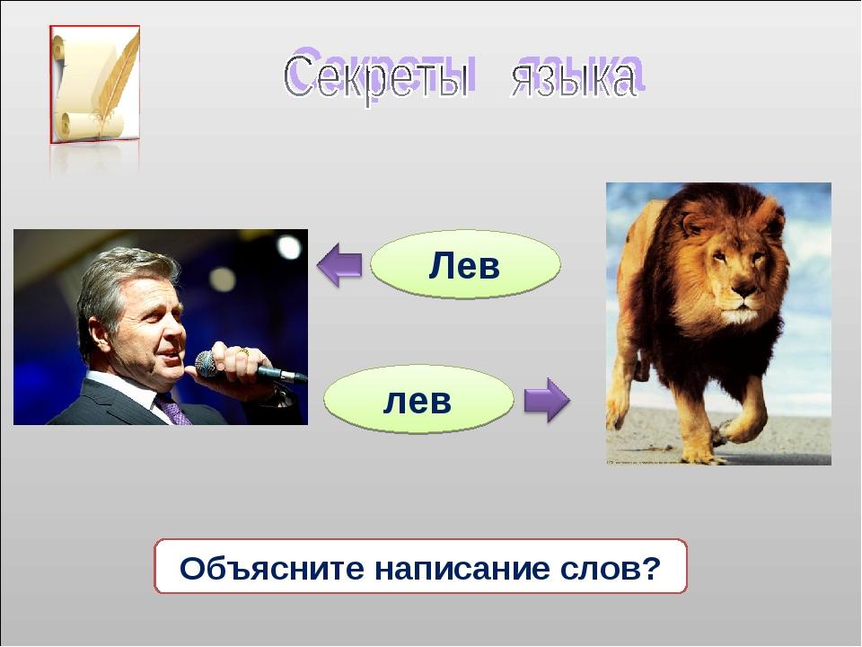 Лев лев Объясните написание слов?
