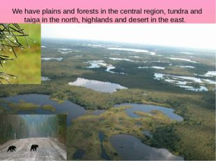 We have plains and forests in the central region, tundra and taiga in the nor