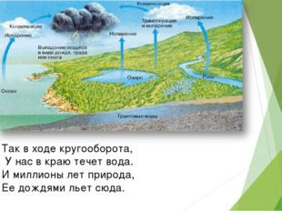 Так в ходе кругооборота, У нас в краю течет вода. И миллионы лет природа, Ее