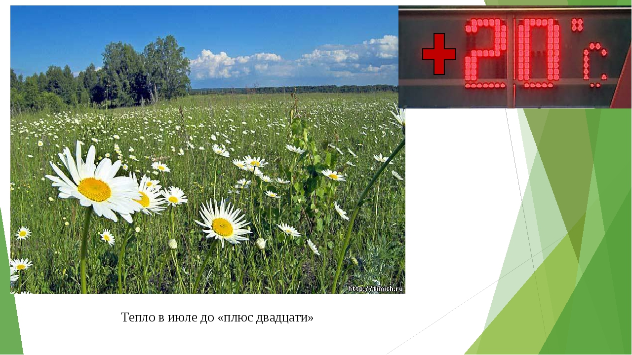 Тепло в июле до «плюс двадцати»