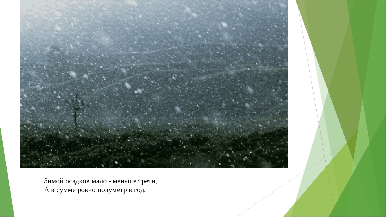 Зимой осадков мало - меньше трети, А в сумме ровно полуметр в год.
