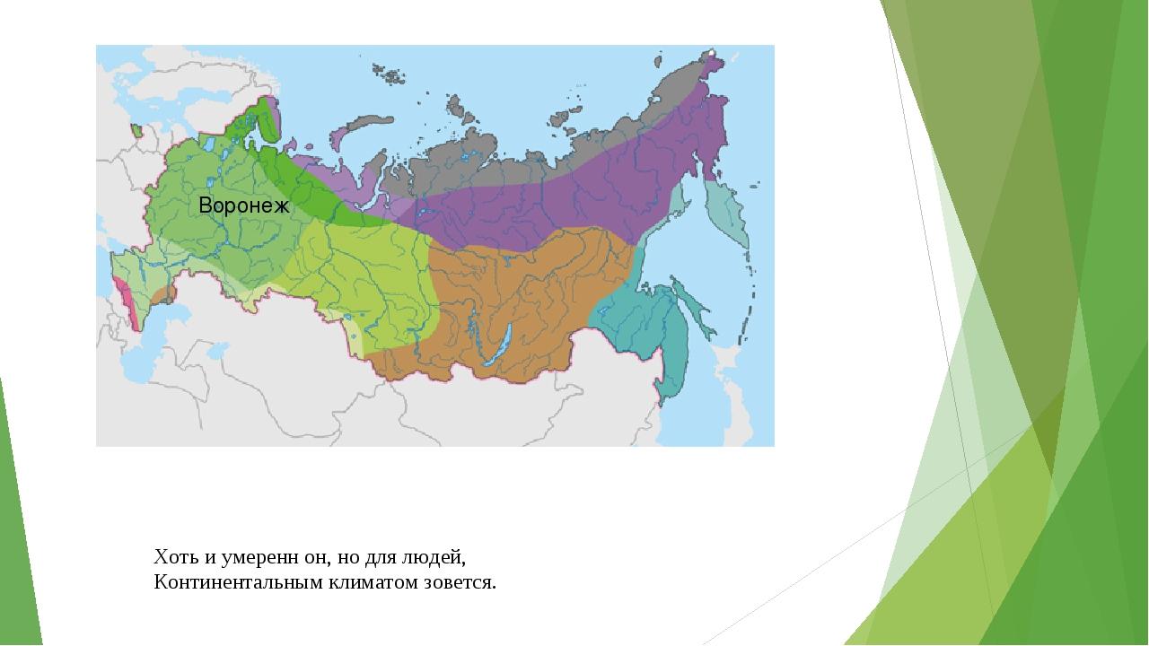 Хоть и умеренн он, но для людей, Континентальным климатом зовется. Воронеж