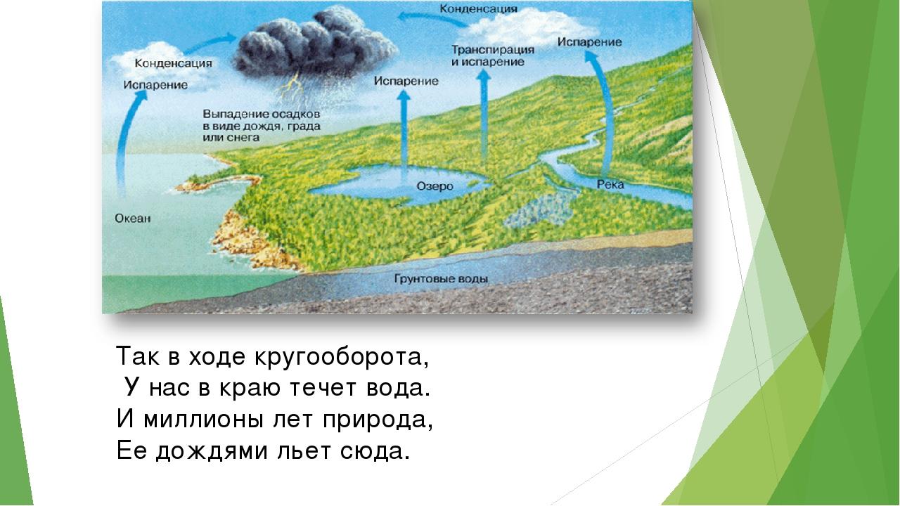 Так в ходе кругооборота, У нас в краю течет вода. И миллионы лет природа, Ее...