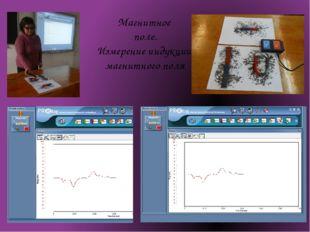 Магнитное поле. Измерение индукции магнитного поля