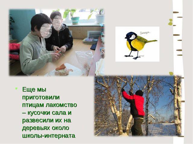 Еще мы приготовили птицам лакомство – кусочки сала и развесили их на деревьях...
