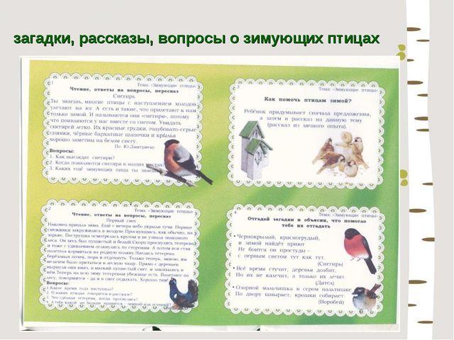 загадки, рассказы, вопросы о зимующих птицах