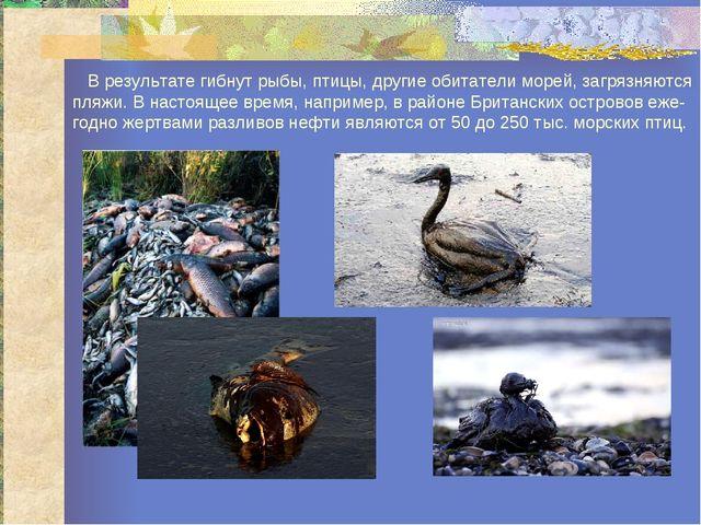 В результате гибнут рыбы, птицы, другие обитатели морей, загрязняются пляжи....