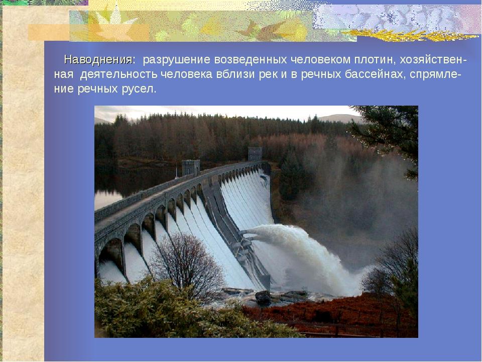 Наводнения: разрушение возведенных человеком плотин, хозяйствен-ная деятельн...