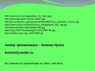 http://www.lono.ru/images/elka_for_news.jpg http://www.agropark.ru/krup-ris/e