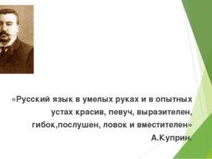 «Русский язык в умелых руках и в опытных устах красив, певуч, выразителен, ги