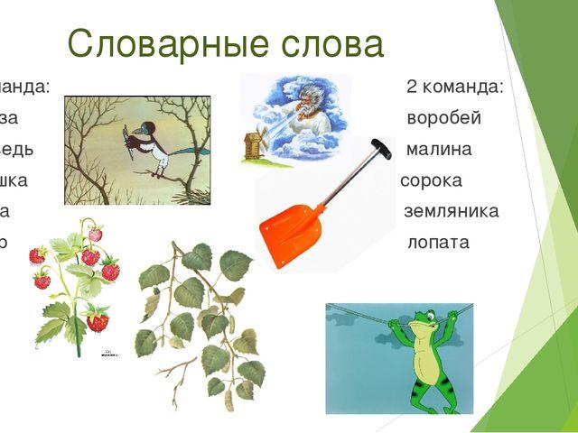 Словарные слова 1 команда: 2 команда: Берёза воробей Медведь малина Лягушка с...
