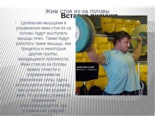 Жим стоя из-за головы Целевыми мышцами в упражнении жим стоя из-за головы буд