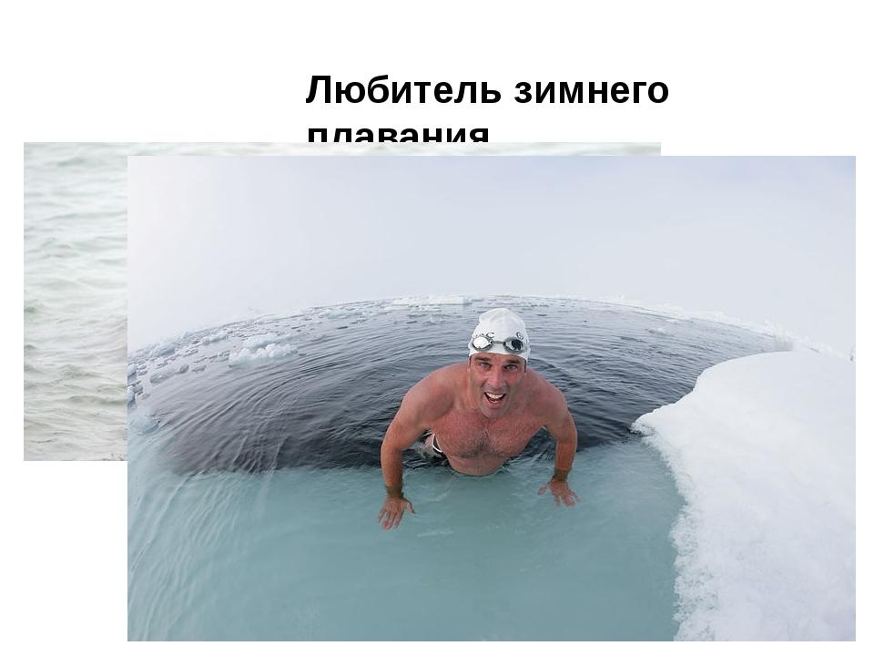 Любитель зимнего плавания …
