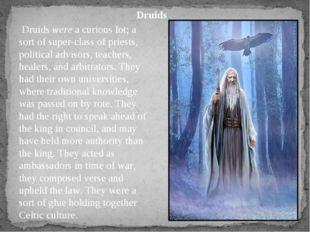 Druidswerea curious lot; a sort of super-class of priests, political advis