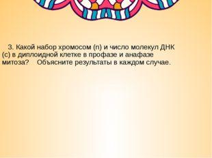 3. Какой набор хромосом (n) и число молекул ДНК (с) в диплоидной клетке в пр