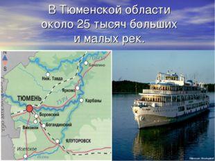 В Тюменской области около 25 тысяч больших и малых рек.
