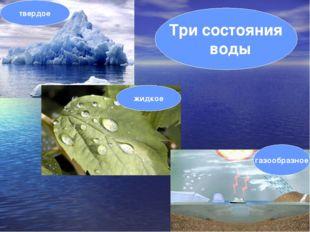 жидкое твердое газообразное Три состояния воды
