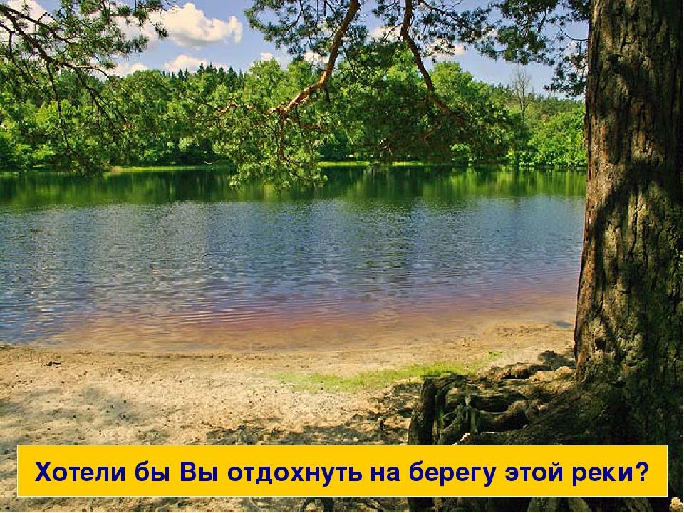 Вы бы хотели отдохнуть на берегу этой реки? Хотели бы Вы отдохнуть на берегу...