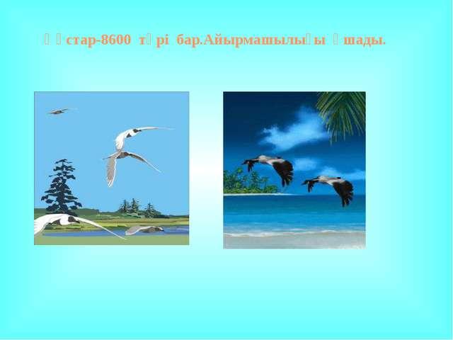 hello_html_5f2ac431.jpg