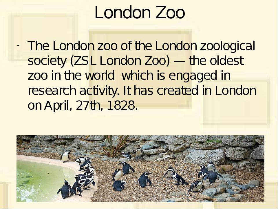 London Zoo The London zoo of the London zoological society (ZSL London Zoo) —...