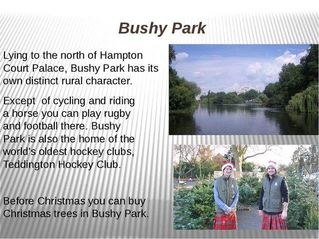 Bushy Park Lying to the north of Hampton Court Palace, Bushy Park has its own...
