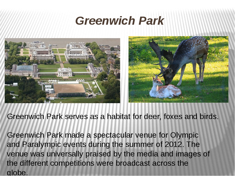 Greenwich Park Greenwich Park serves as a habitat for deer, foxes and birds....