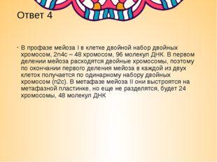 Ответ 4 В профазе мейоза I в клетке двойной набор двойных хромосом, 2n4c – 48