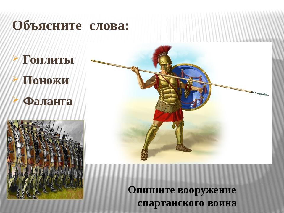 Объясните слова: Гоплиты Поножи Фаланга Опишите вооружение спартанского воина