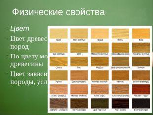 Физические свойства Цвет Цвет древесины различен у разных пород По цвету можн