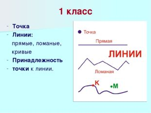 1 класс Точка Линии: прямые, ломаные, кривые Принадлежность точки к линии.