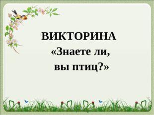 ВИКТОРИНА «Знаете ли, вы птиц?»