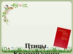 Птицы Красной книги Саратовской области