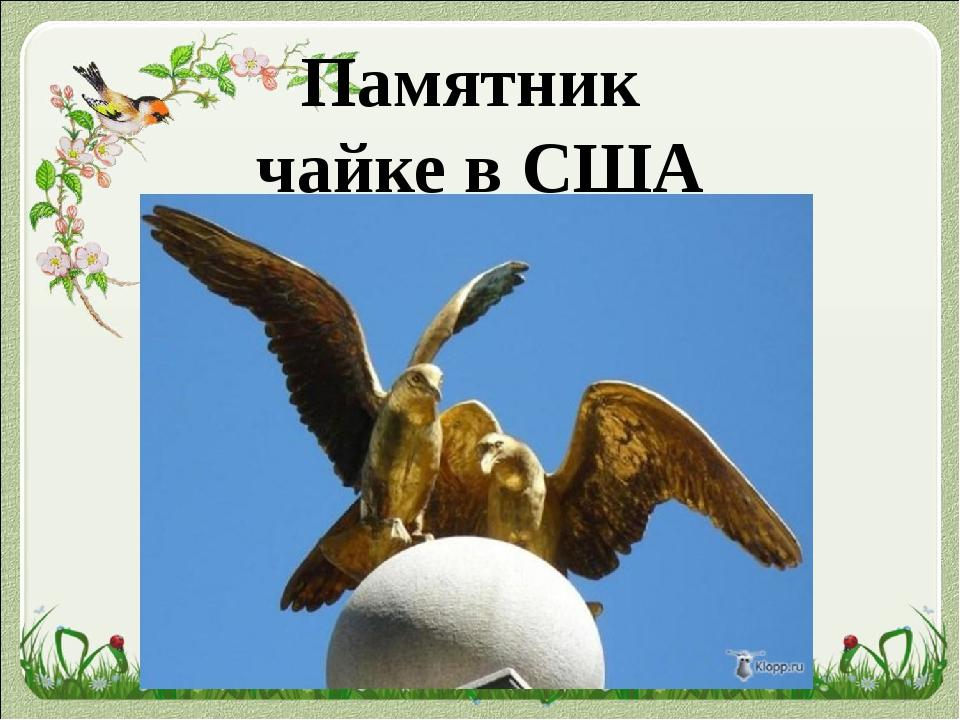 Памятник чайке в США