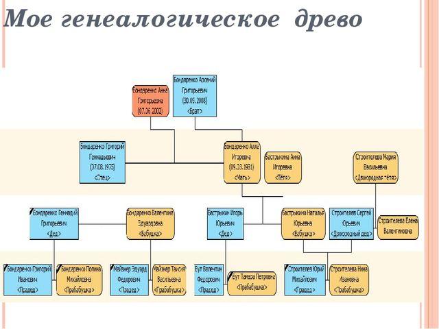 Мое генеалогическое древо