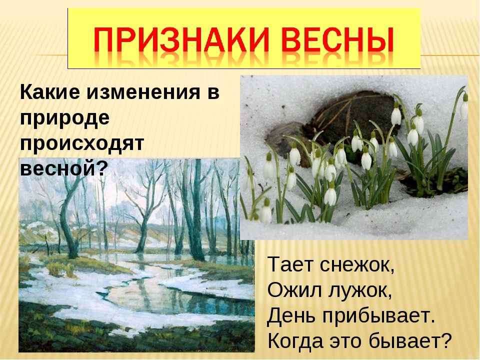 Какие изменения в природе происходят весной? Тает снежок, Ожил лужок, День пр...