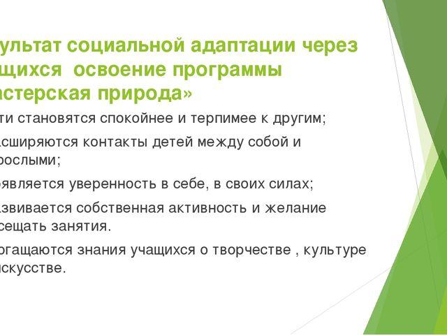 Результат социальной адаптации через учащихся освоение программы «Мастерская...