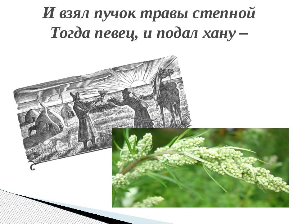 И взял пучок травы степной Тогда певец, и подал хану –