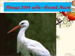 Птица 2004 года –Белый Аист