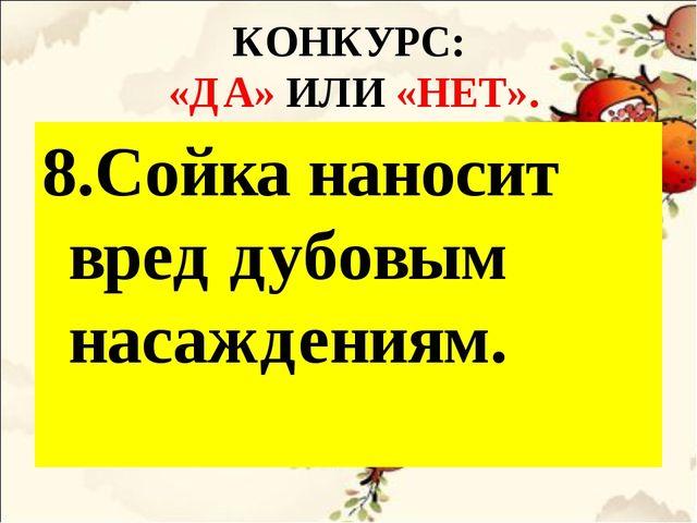 КОНКУРС: «ДА» ИЛИ «НЕТ». 8.Сойка наносит вред дубовым насаждениям.