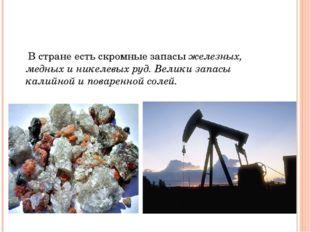 В стране есть скромные запасы железных, медных и никелевых руд. Велики запас